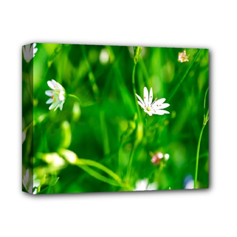 Inside The Grass Deluxe Canvas 14  X 11  by FunnyCow