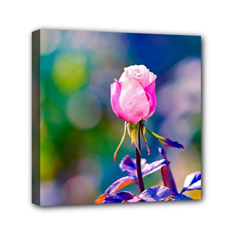Pink Rose Flower Mini Canvas 6  X 6