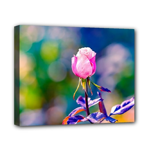 Pink Rose Flower Canvas 10  X 8