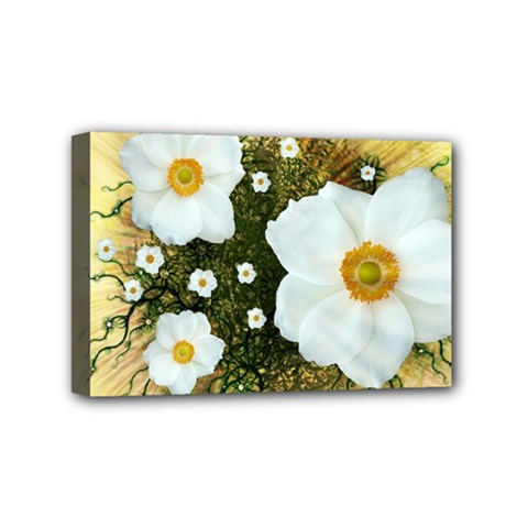 Summer Anemone Sylvestris Mini Canvas 6  X 4