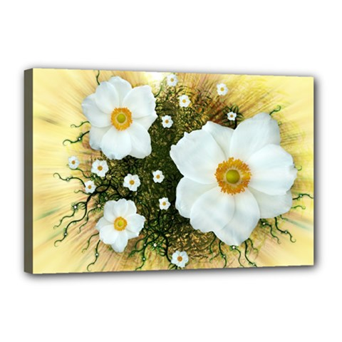 Summer Anemone Sylvestris Canvas 18  X 12