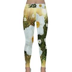 Summer Anemone Sylvestris Classic Yoga Leggings by Nexatart