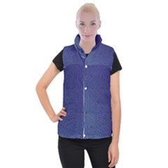 Fractal Rendering Background Blue Women s Button Up Vest