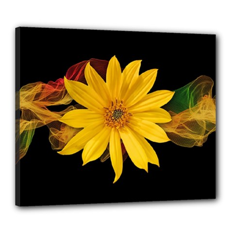 Sun Flower Blossom Bloom Particles Canvas 24  X 20
