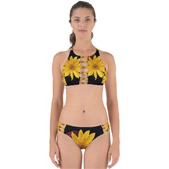 Sun Flower Blossom Bloom Particles Perfectly Cut Out Bikini Set