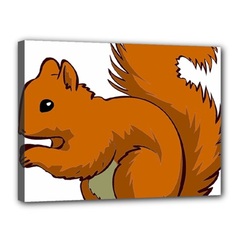 Squirrel Animal Pet Canvas 16  X 12