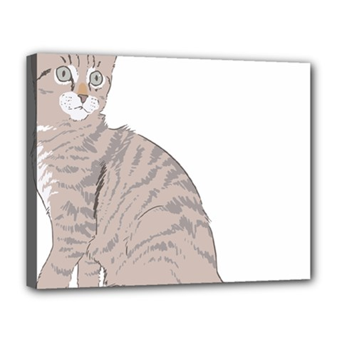Kitten Cat Drawing Line Art Line Canvas 14  X 11