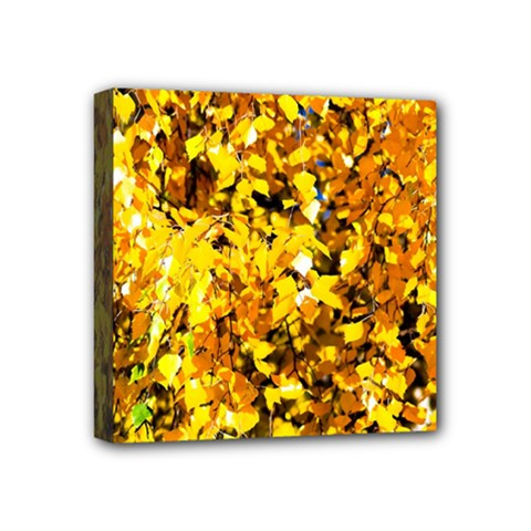 Birch Tree Yellow Leaves Mini Canvas 4  X 4  by FunnyCow