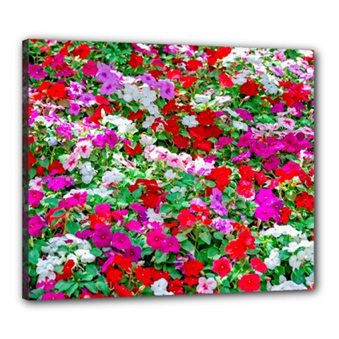 Colorful Petunia Flowers Canvas 24  X 20  by FunnyCow