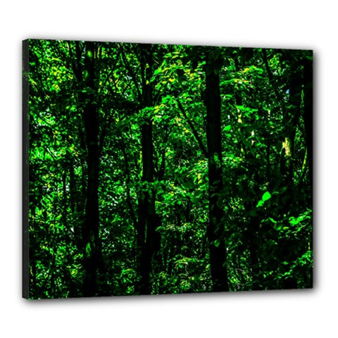 Emerald Forest Canvas 24  X 20