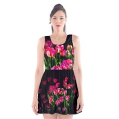 Pink Tulips Dark Background Scoop Neck Skater Dress by FunnyCow