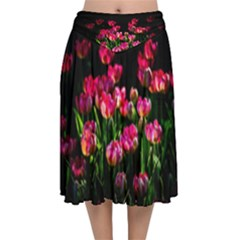Pink Tulips Dark Background Velvet Flared Midi Skirt by FunnyCow