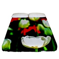 White And Red Sunlit Tulips Fitted Sheet (queen Size)