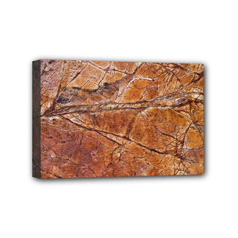 Granite 0112 Mini Canvas 6  X 4