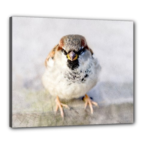 Do Not Mess With Sparrows Canvas 24  X 20