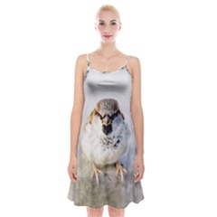 Do Not Mess With Sparrows Spaghetti Strap Velvet Dress by FunnyCow