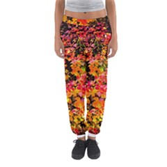 Orange, Yellow Cotoneaster Leaves In Autumn Women s Jogger Sweatpants by FunnyCow