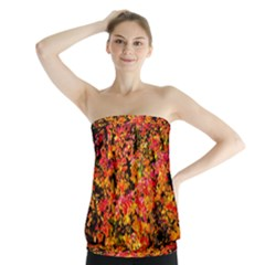 Orange, Yellow Cotoneaster Leaves In Autumn Strapless Top