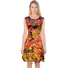 Orange, Yellow Cotoneaster Leaves In Autumn Capsleeve Midi Dress