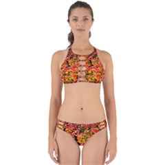 Orange, Yellow Cotoneaster Leaves In Autumn Perfectly Cut Out Bikini Set