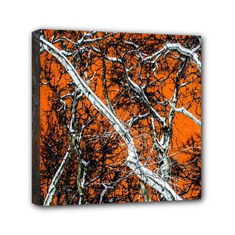 Red Night Of Winter Mini Canvas 6  X 6  by FunnyCow