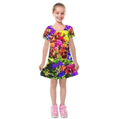 Viola Tricolor Flowers Kids  Short Sleeve Velvet Dress