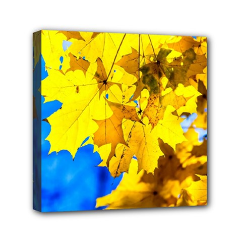 Yellow Maple Leaves Mini Canvas 6  X 6  by FunnyCow