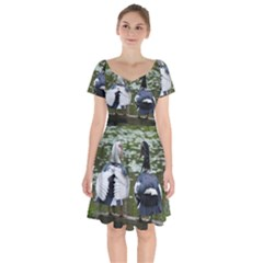 Muscovy Ducks At The Pond Short Sleeve Bardot Dress