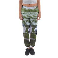 Muscovy Ducks At The Pond Women s Jogger Sweatpants