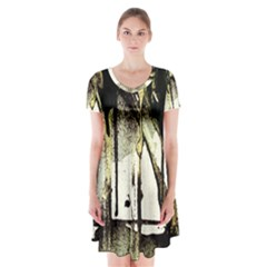 There Is No Promissed Rain 2 Short Sleeve V Neck Flare Dress