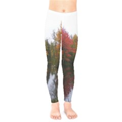 Autumn Pond Kids  Legging
