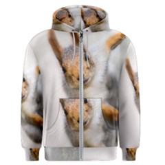 Curious Squirrel Men s Zipper Hoodie by FunnyCow