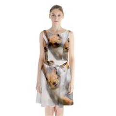 Curious Squirrel Sleeveless Waist Tie Chiffon Dress