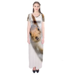 Curious Squirrel Short Sleeve Maxi Dress by FunnyCow