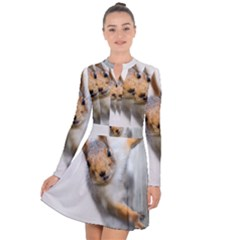 Curious Squirrel Long Sleeve Panel Dress by FunnyCow