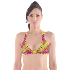 Festive Music Tribute In Rainbows Plunge Bikini Top