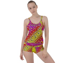 Festive Music Tribute In Rainbows Boyleg Tankini Set