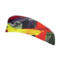 2 Stretchable Headband