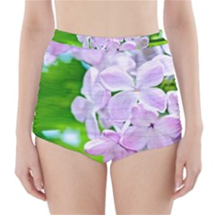 Elegant Pink Lilacs In Spring High Waisted Bikini Bottoms by FunnyCow