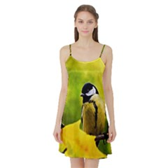 Tomtit Bird Dressed To The Season Satin Night Slip