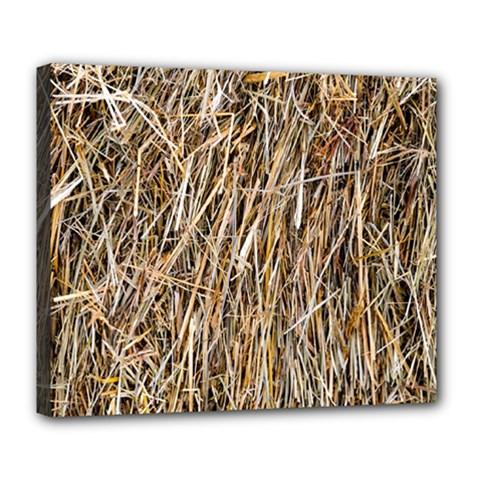 Dry Hay Texture Deluxe Canvas 24  X 20