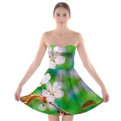 Sakura Flowers On Green Strapless Bra Top Dress