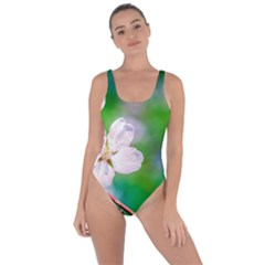 Sakura Flowers On Green Bring Sexy Back Swimsuit
