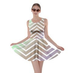 Ombre Zigzag 03 Skater Dress