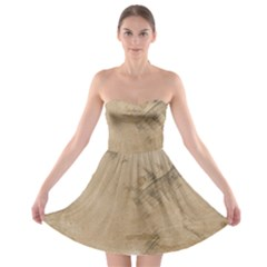 Anna Pavlova 2485075 960 720 Strapless Bra Top Dress