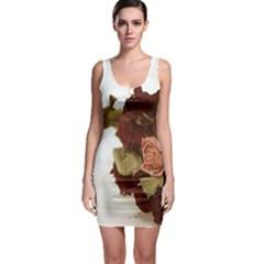 Shabby 1814373 960 720 Bodycon Dress