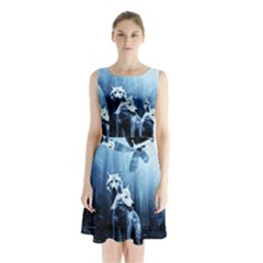 Wolfs Sleeveless Waist Tie Chiffon Dress
