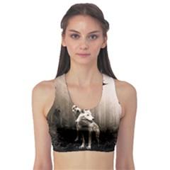 Wolfs Sports Bra