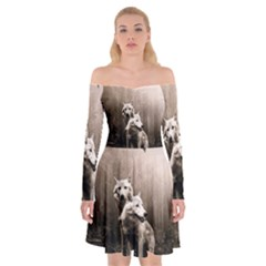 Wolfs Off Shoulder Skater Dress