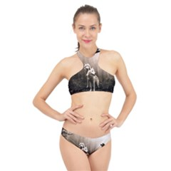Wolfs High Neck Bikini Set